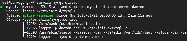 设置数据库的安全选项